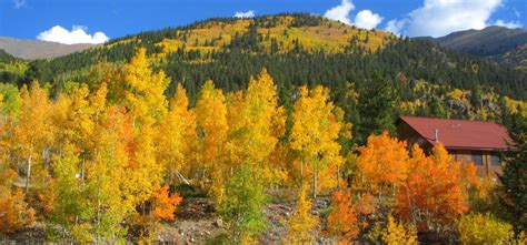 Colorado Autumn Photos - Twin Lakes, CO and Independence