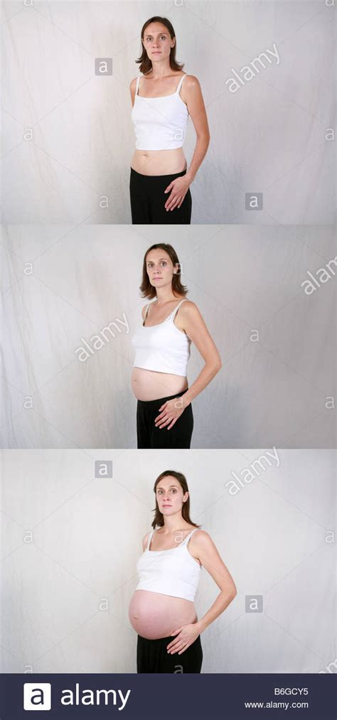 Human Pregnancy Stages Stockfotos & Human Pregnancy Stages