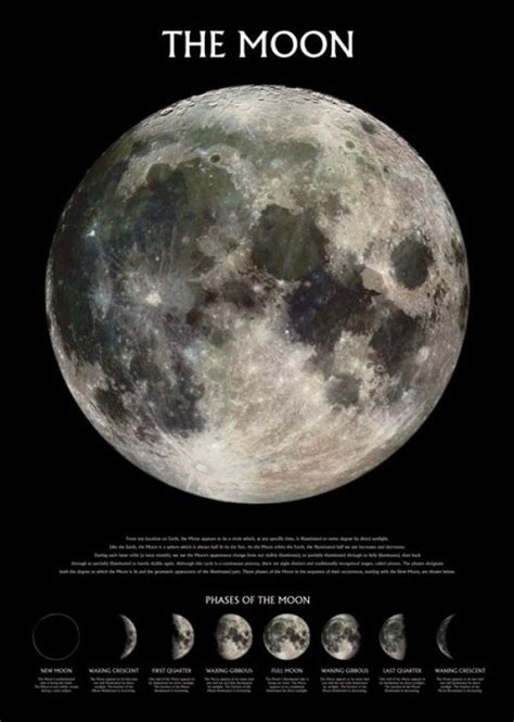 Space posters - Earth's Moon poster PP0432 - Panic Posters